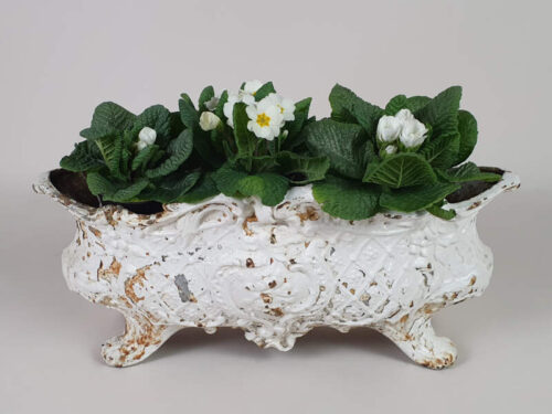 Large French Cast Iron Jardiniere