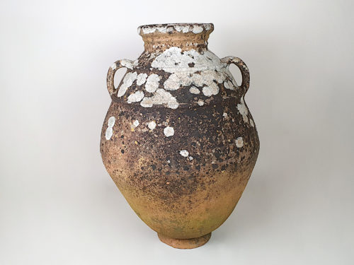 Large terracotta Urn with good covering of moss and lichen